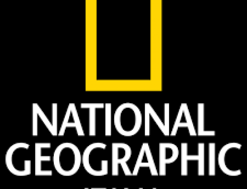 Parla del Ginseng anche il National Geographic Italia …