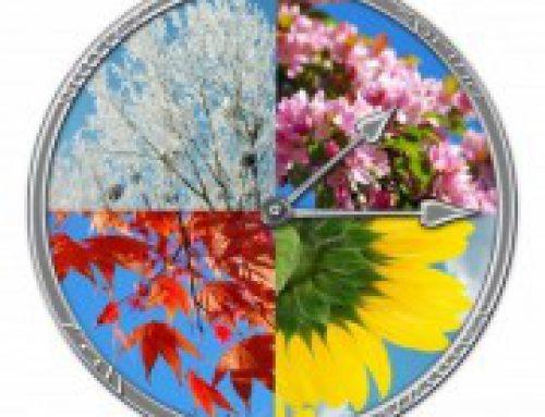 Cambio di stagione e ti senti stanco ? … scegli il Ginseng Rosso Coreano, il tuo Integratore Naturale !