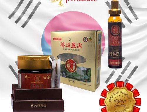 Best quality of Red Ginseng!